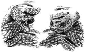 Значение татуировки змей
