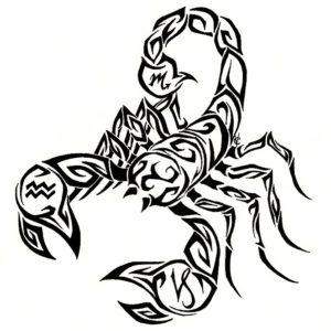 Значение татуировки скорпион